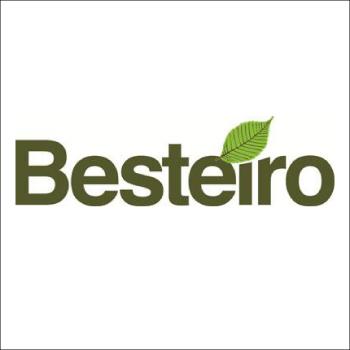 D. Bautista Besteiro Fernández