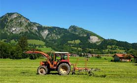 Ayudas creación de empresas por agricultores. En Boletín de Noticias para Emprendedores de la Fundación CEL - Iniciativas por Lugo