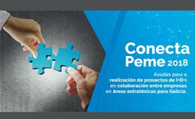 Conecta Peme