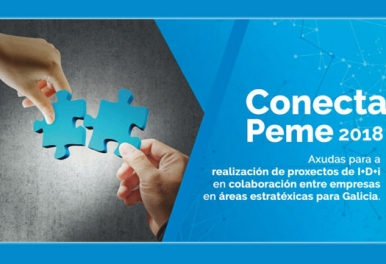 Taller Conecta Peme