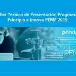 Infórmate sobre los programas Principia e Innova PEME 2019
